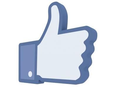 http://mes-recettes-toutes-vertes.cowblog.fr/images/facebooklike.jpg